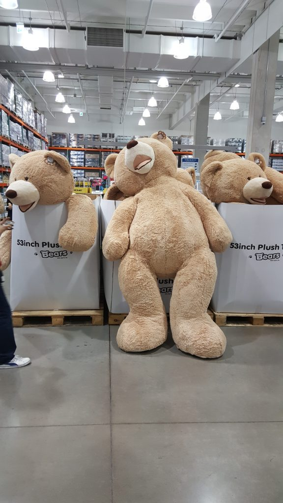 近くにいる人の足の大きさでだいたいのクマの大きさがお分かりいただけたであろうか。
